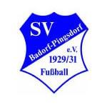 Gaffel Sportvereine SpVg. Badorf-Pingsdorf 1929/31 e.V.